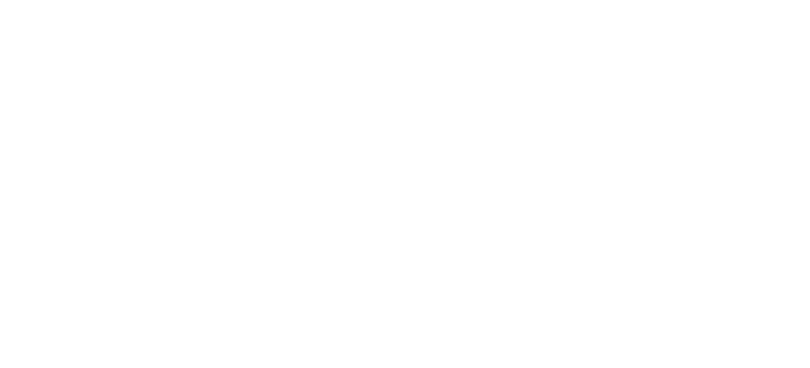 Viki Gonia Photography logo
